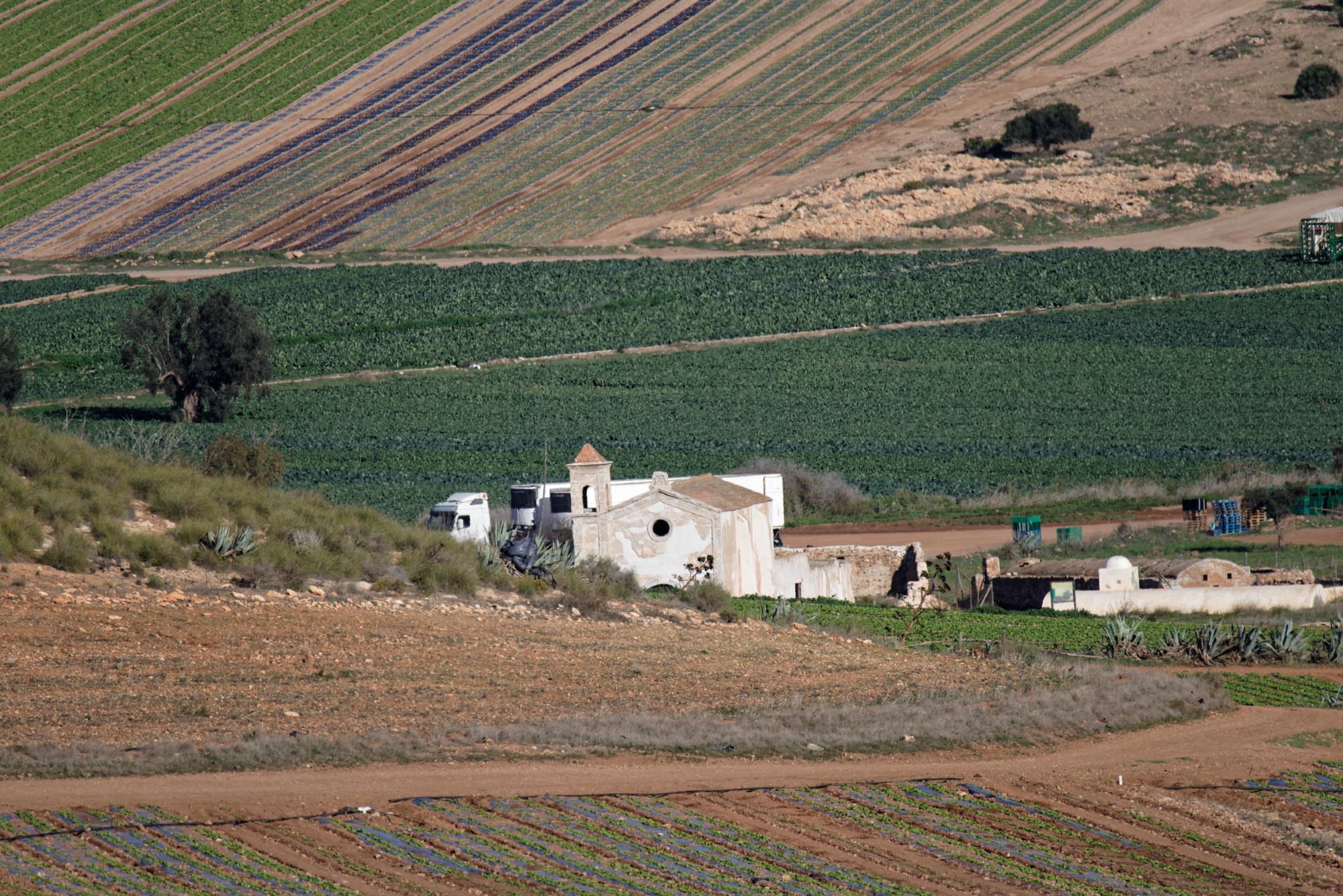 171218-Piste Rodalquilar vers Cortijo del Fraile (Cabo de Gata-Andalousie) (51)