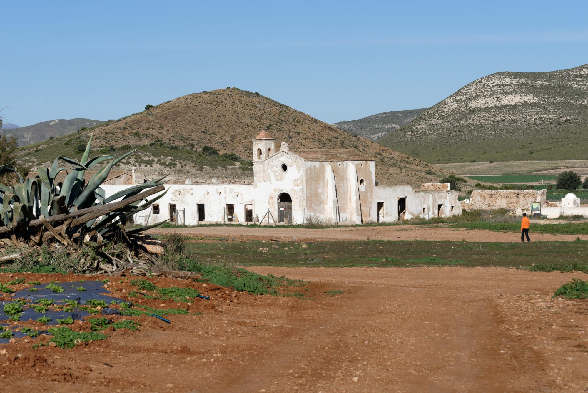 171218-Piste Rodalquilar vers Cortijo del Fraile (Cabo de Gata-Andalousie) (67)