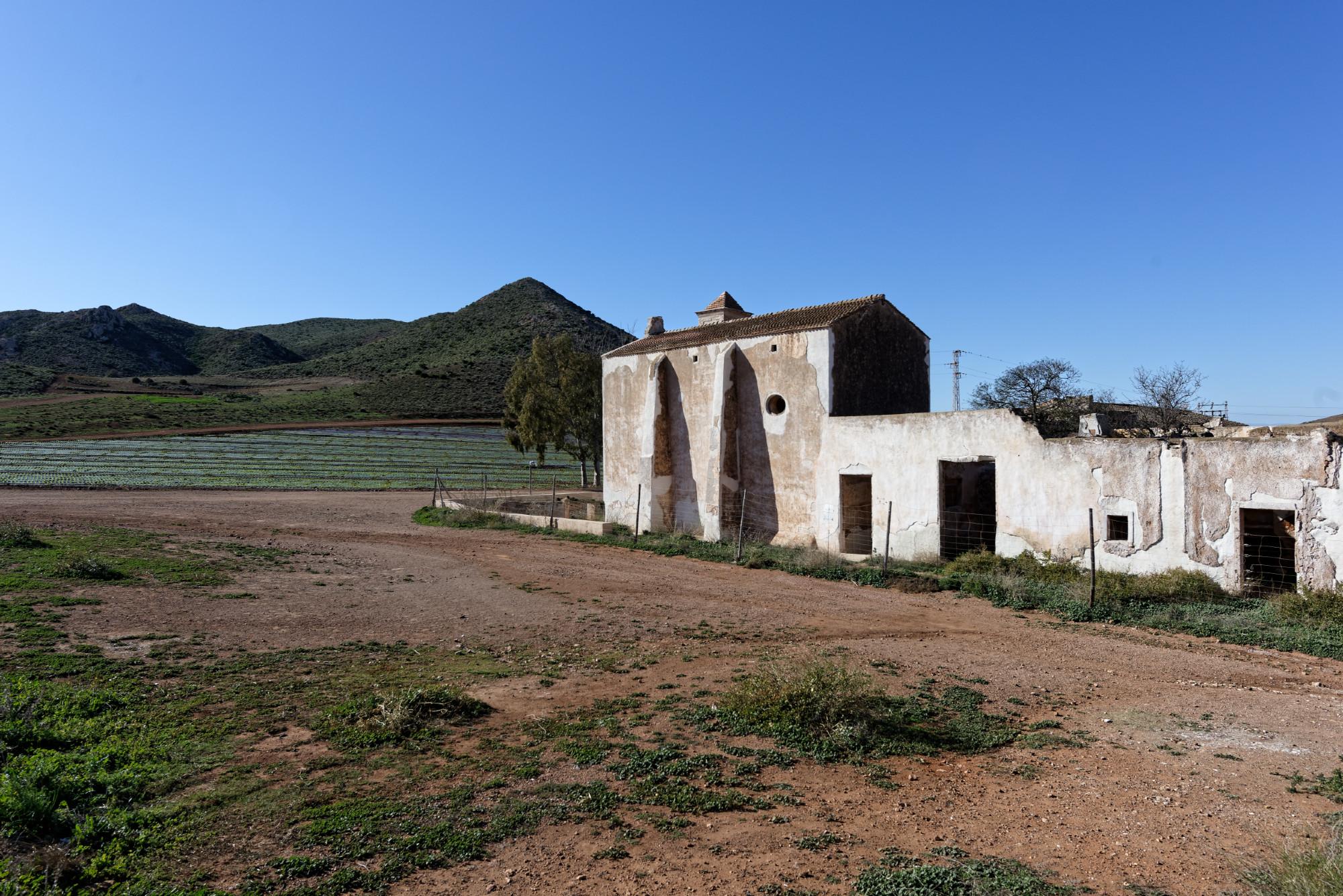 171218-Piste Rodalquilar vers Cortijo del Fraile (Cabo de Gata-Andalousie) (79)