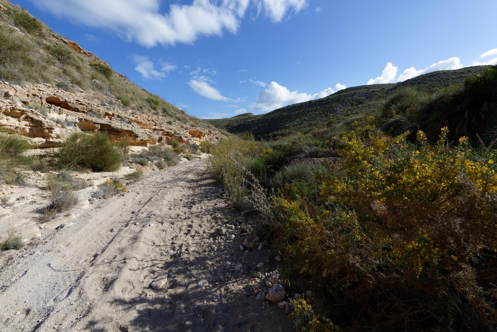 171219-Cala de Enmedio pistes autour (Cabo de Gata-Andalousie) (11)