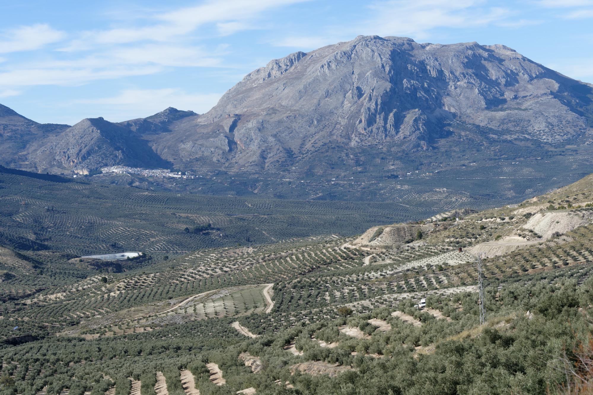 2 Avant Ubeda (Andalousie) (11)