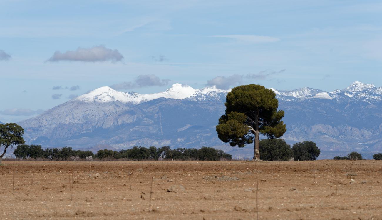 180307-3-Gorafe (Andalousie) (123)