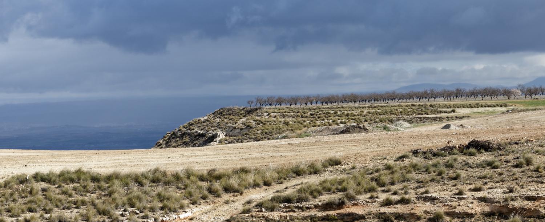 180308-2-Embalse de Negratin (Andalousie) (11)