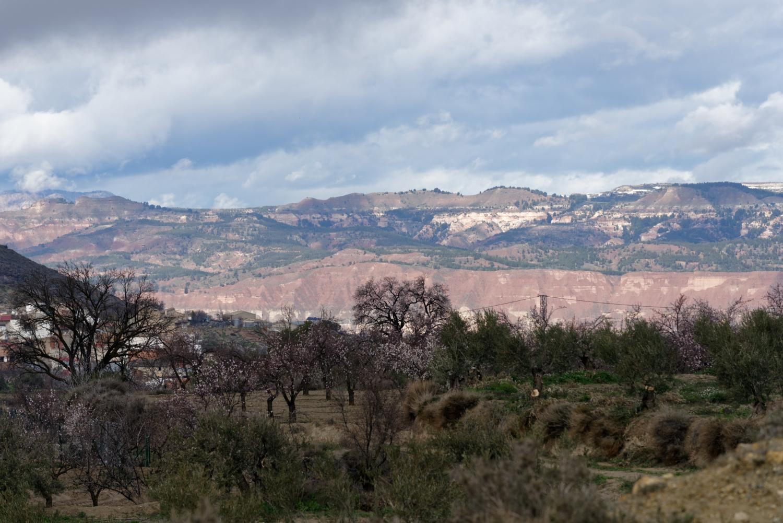 180308-2-Embalse de Negratin (Andalousie) (13)