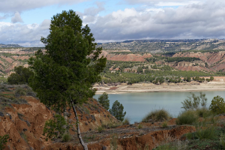 180308-2-Embalse de Negratin (Andalousie) (21)