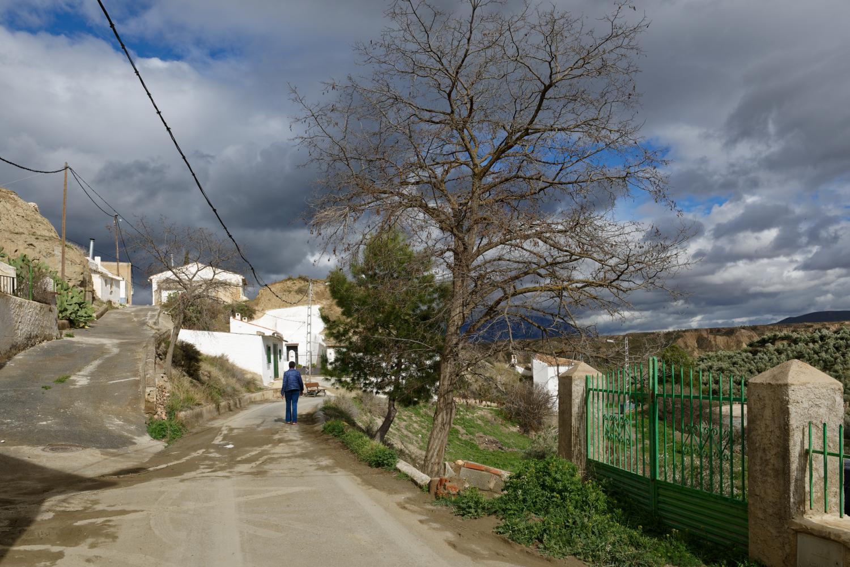 180308-3-Olivar (Andalousie) (20)