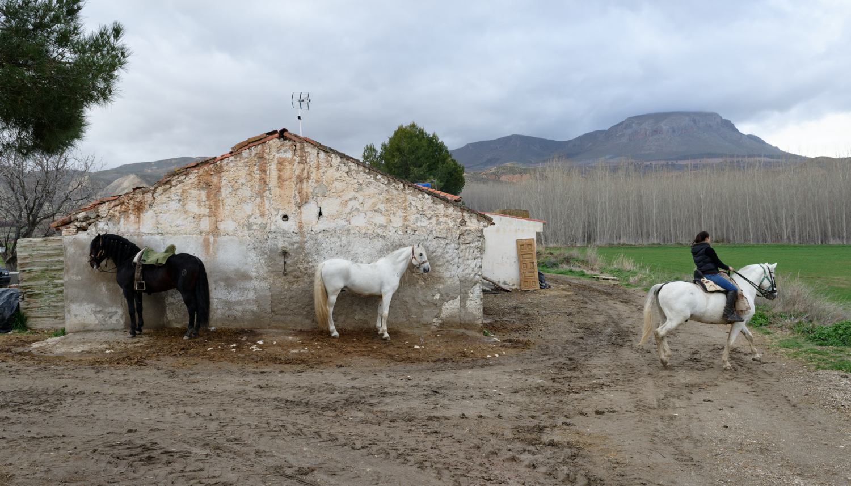 180308-5-Fonelas (Andalousie) (13)