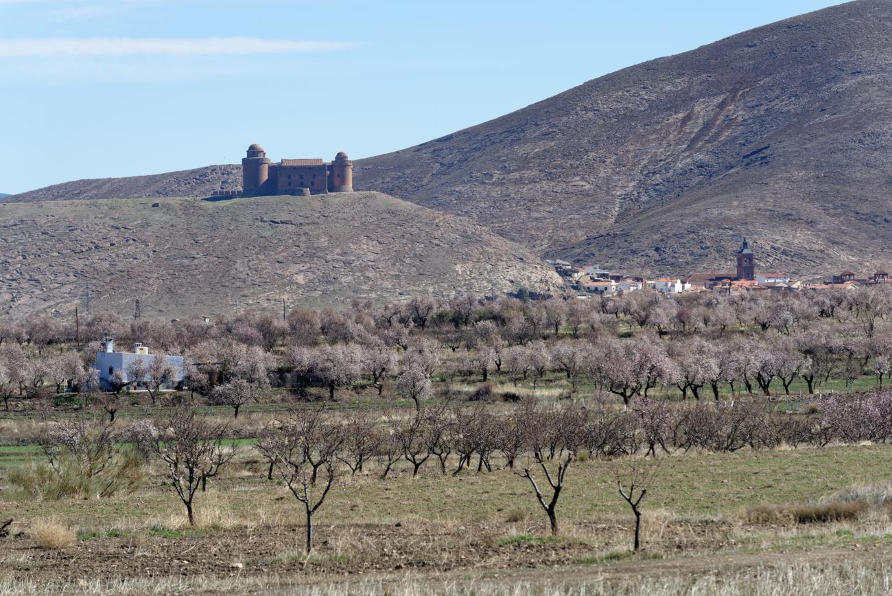 180309-4-La Calahora (Andalousie) (10)