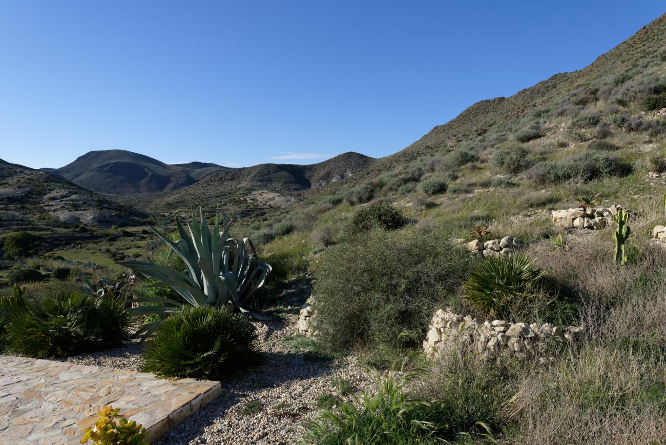 180309-6-Presillias Bajas (Cabo de Gata-Andalousie) (11)