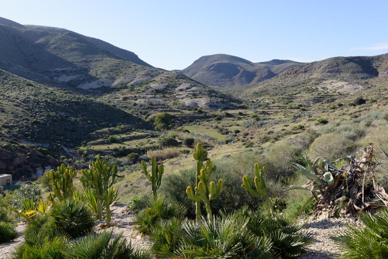 180309-6-Presillias Bajas (Cabo de Gata-Andalousie) (13)