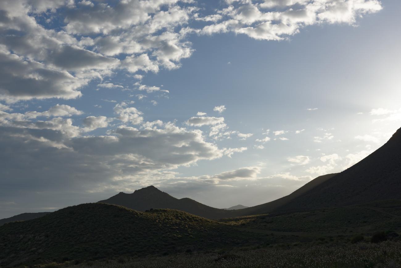 180309-6-Presillias Bajas (Cabo de Gata-Andalousie) (22)