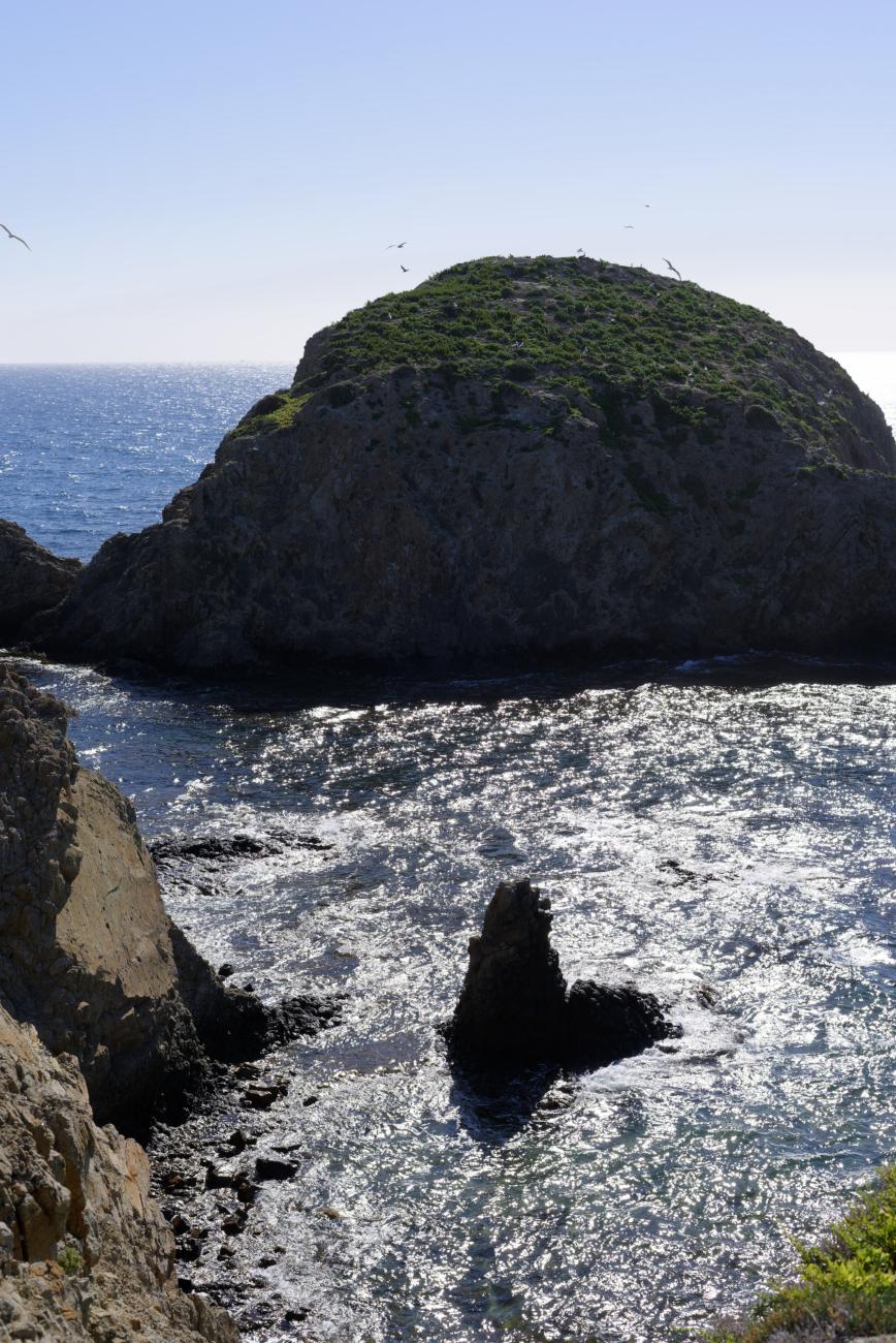 180312-2-La Isleta del Moro (Cabo de Gata-Andalousie) (12)