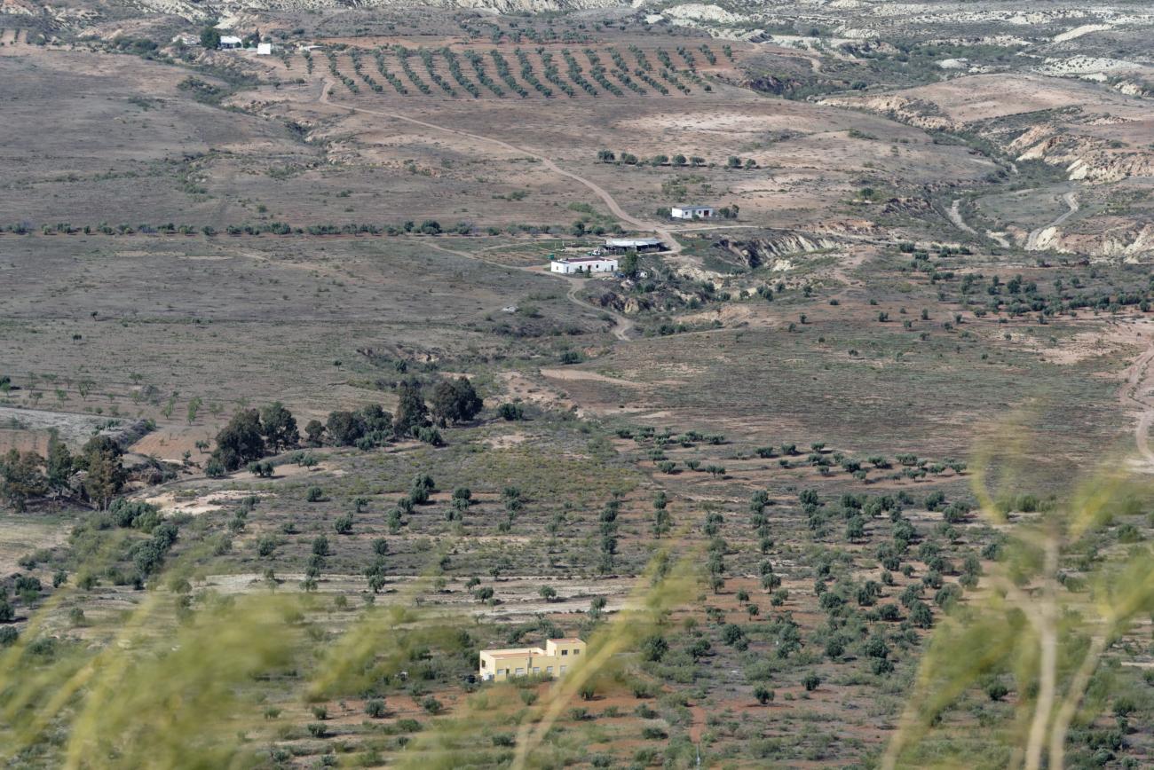 180314-2-Turrillas (Sierra Alhamilla-Andalousie) (12)