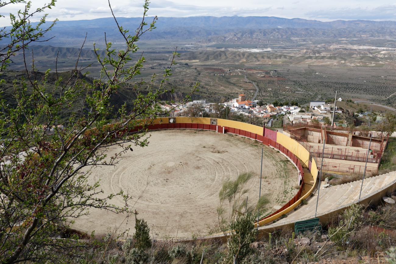 180314-2-Turrillas (Sierra Alhamilla-Andalousie) (17)