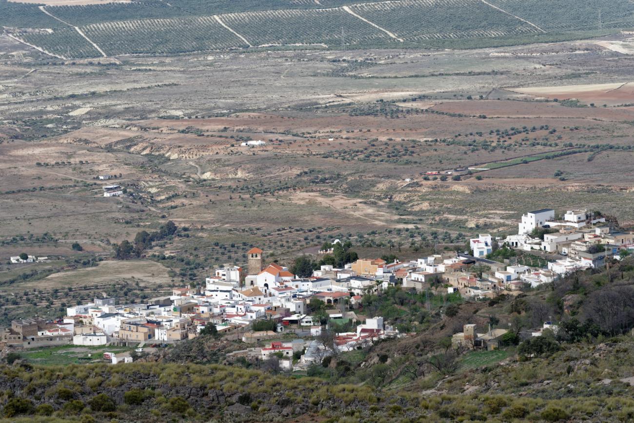 180314-3-Sierra Alhamilla (Sierra Alhamilla-Andalousie) (24)