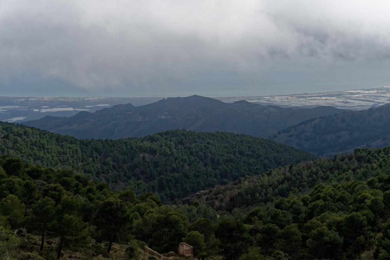 180314-3-Sierra Alhamilla (Sierra Alhamilla-Andalousie) (30)