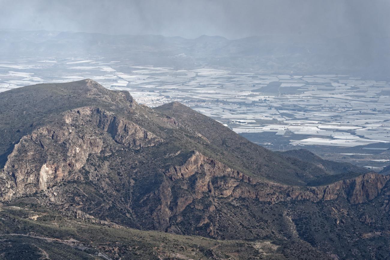 180314-3-Sierra Alhamilla (Sierra Alhamilla-Andalousie) (33)