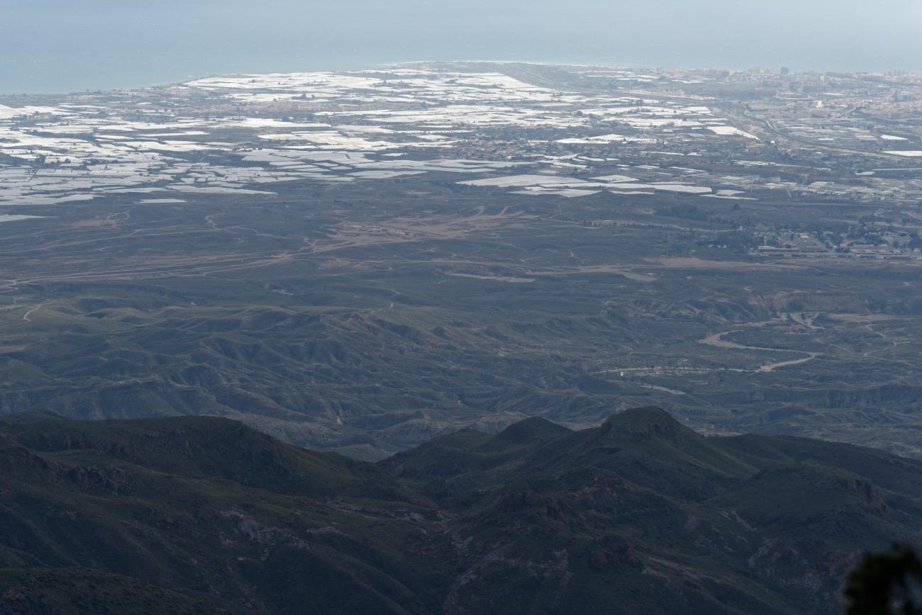 180314-3-Sierra Alhamilla (Sierra Alhamilla-Andalousie) (41)