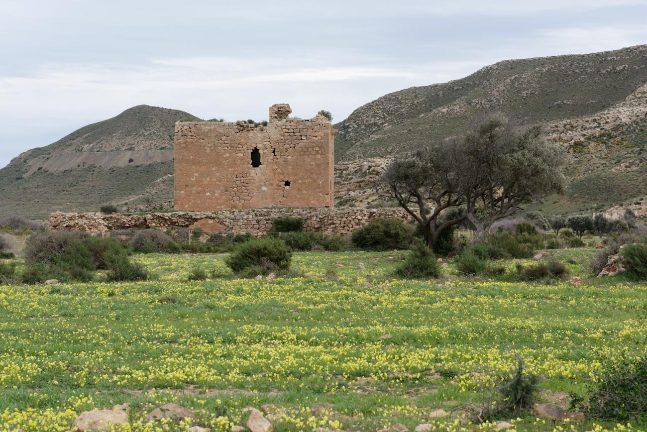 180315-1-Torre de los Alumbres (Cala del Playazo-Cabo de Gata) (11)