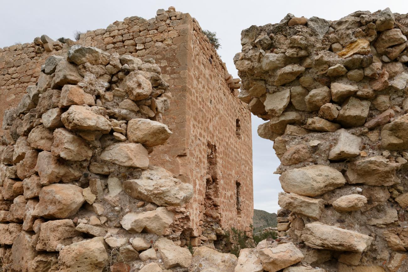180315-1-Torre de los Alumbres (Cala del Playazo-Cabo de Gata) (13)