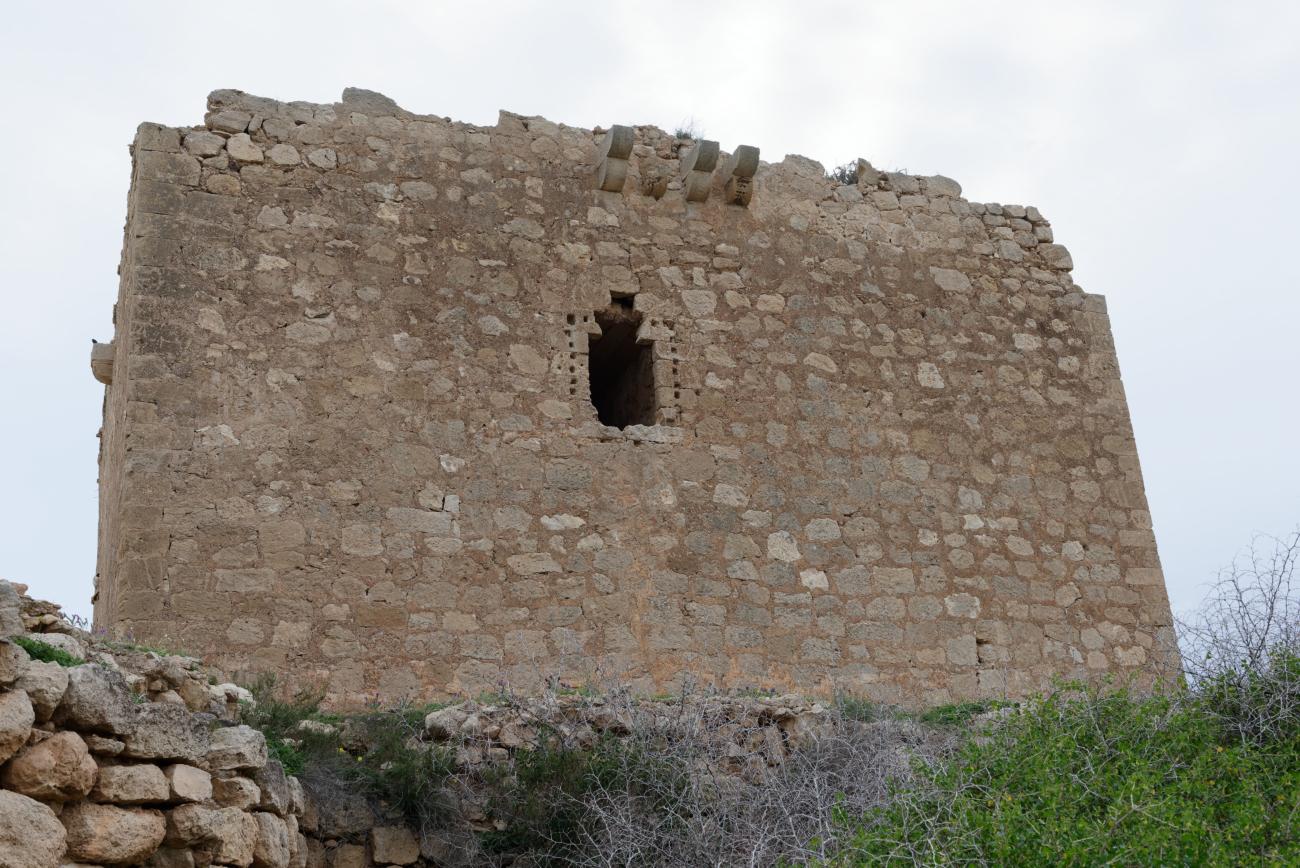 180315-1-Torre de los Alumbres (Cala del Playazo-Cabo de Gata) (15)