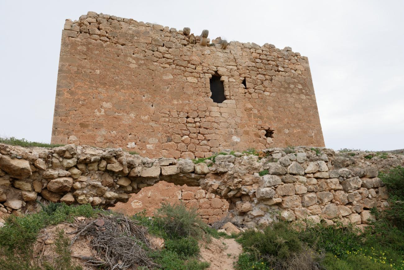 180315-1-Torre de los Alumbres (Cala del Playazo-Cabo de Gata) (18)