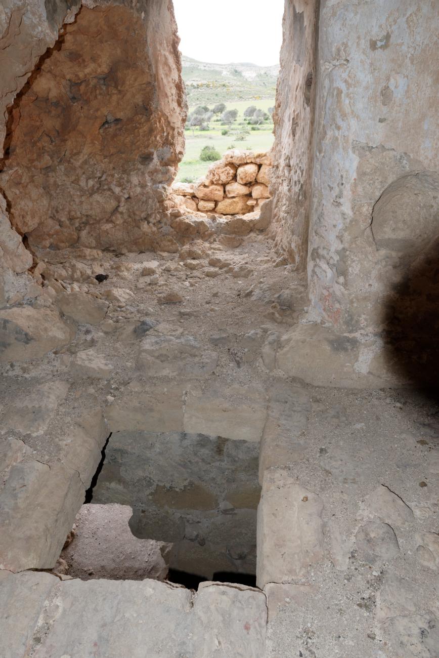 180315-1-Torre de los Alumbres (Cala del Playazo-Cabo de Gata) (21)