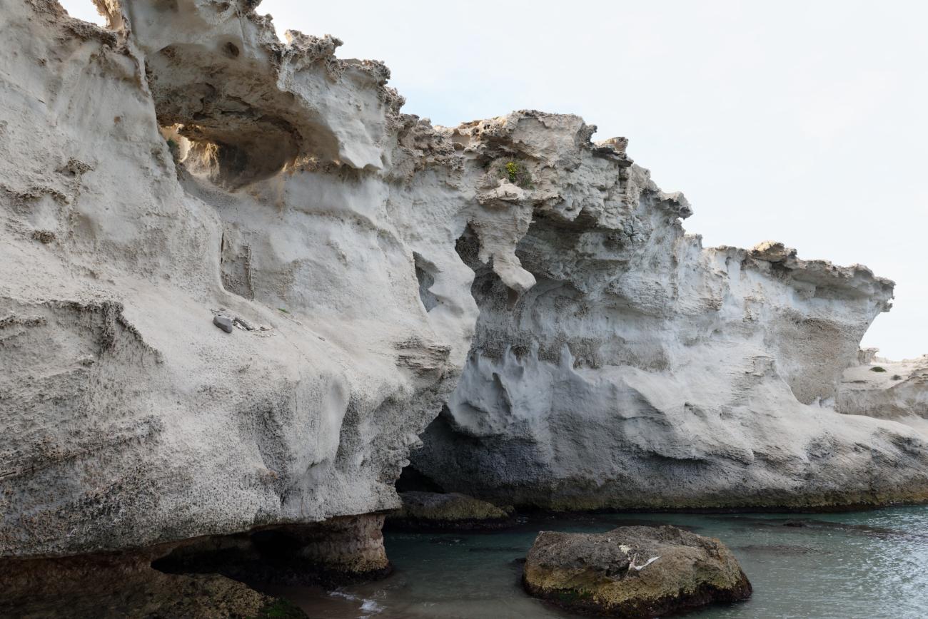 180315-3-Playa del Arco (Los Escullos-Cabo de Gata) (60)