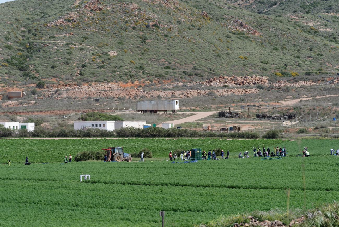 180317-4-Cortijo del Fraile (Cabo de Gata) (6)