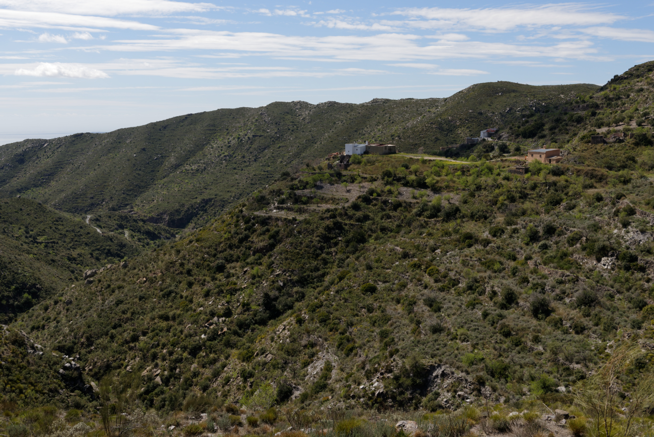 180319-2-Sierra Cabrera (Sierra Cabrera-Andalousie) (37)