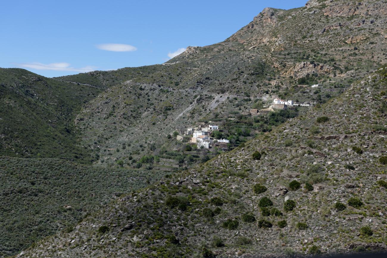 180319-2-Sierra Cabrera (Sierra Cabrera-Andalousie) (40)