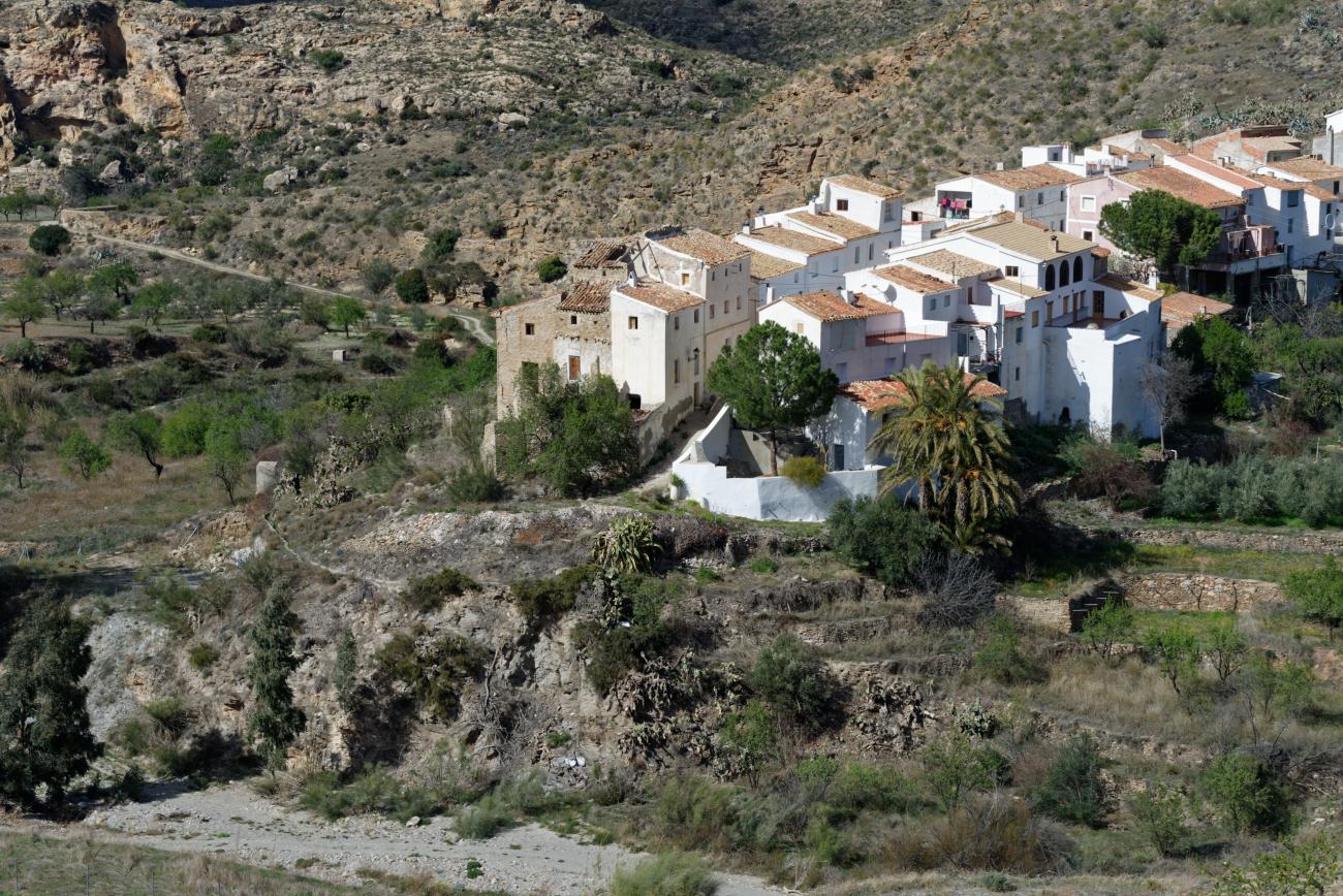 180320-2-Sierra de Filabres (Sierra de Filabres-Andalousie) (45)