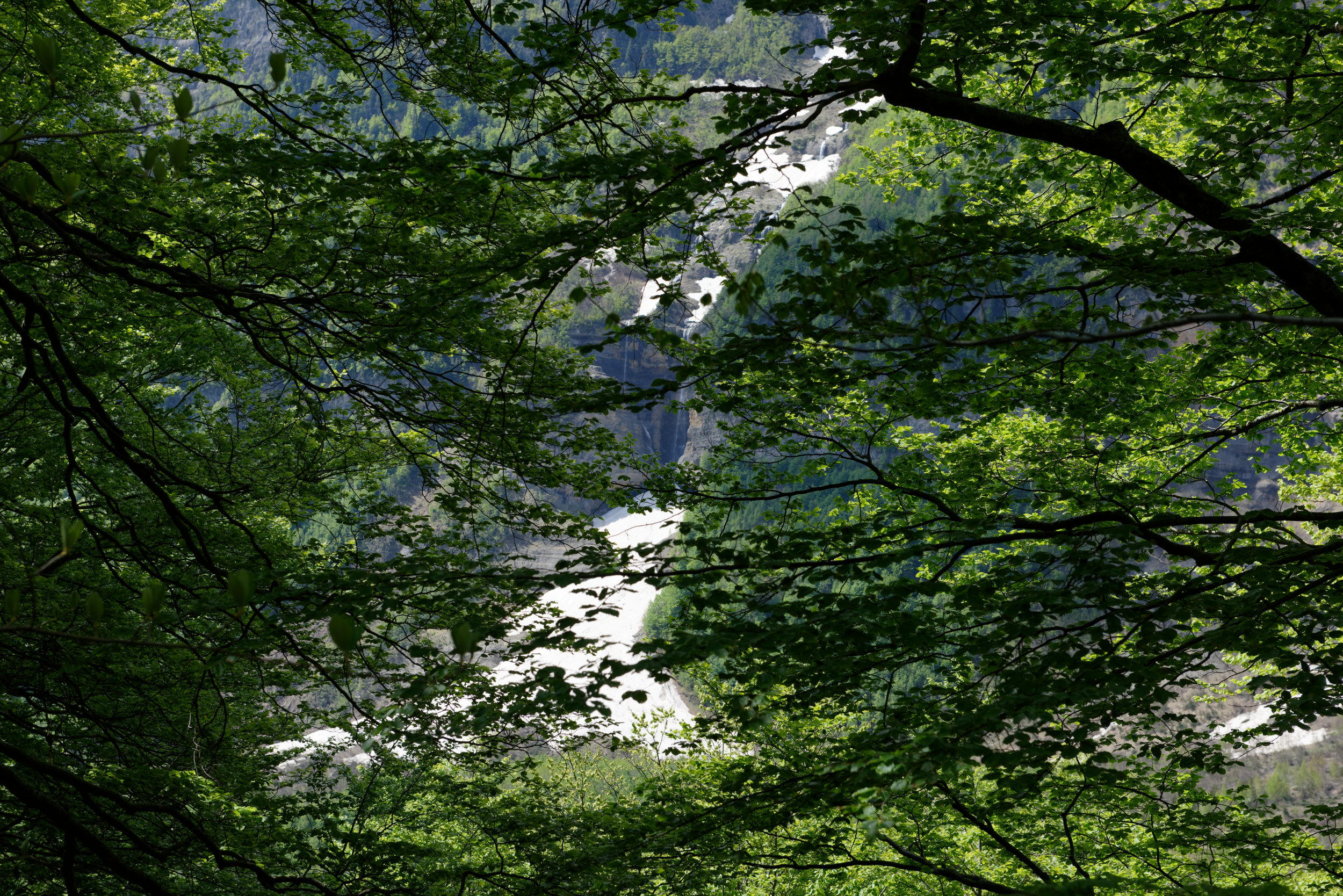 180522-Marche Cascades de la Larri (129) (Valle de Pineta-Sobrarbe-Aragon)