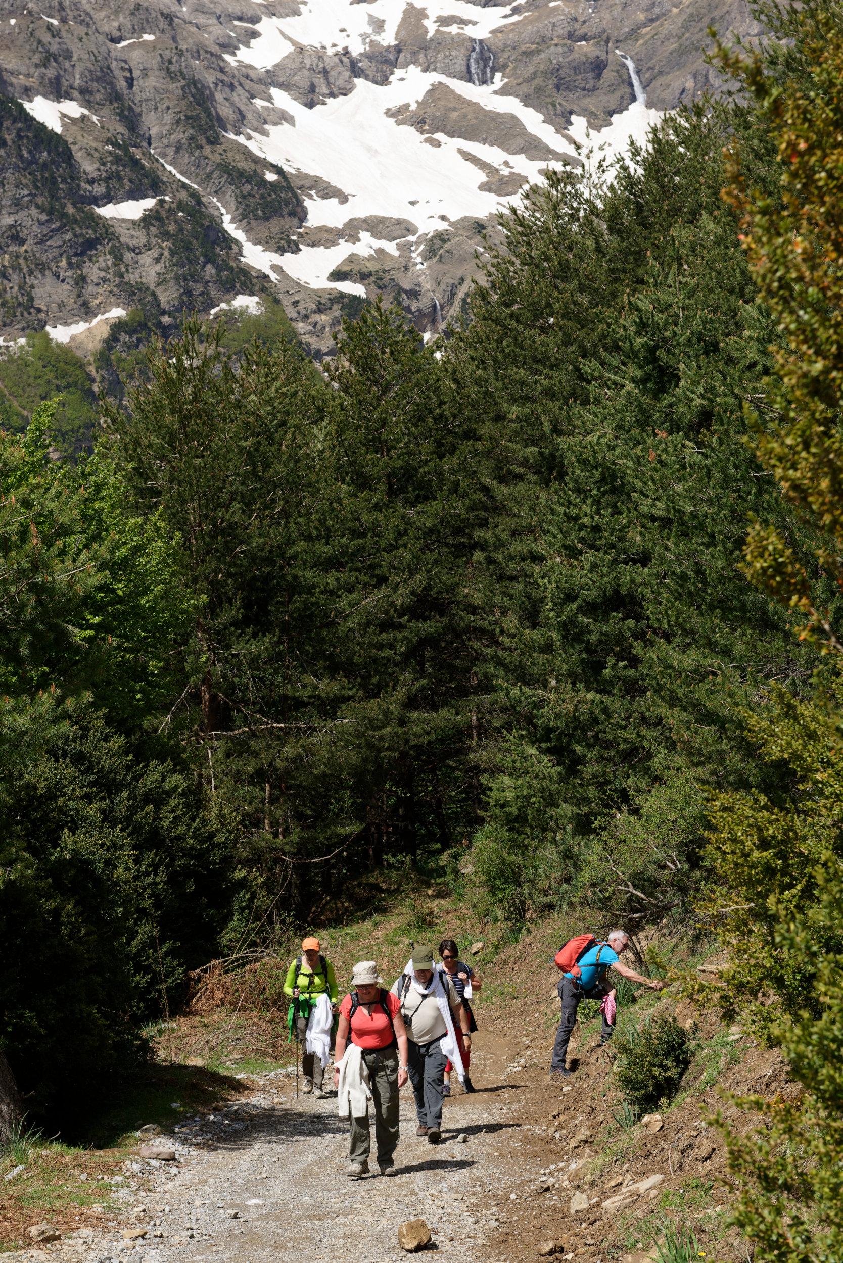 180522-Marche Cascades de la Larri (145) (Valle de Pineta-Sobrarbe-Aragon)