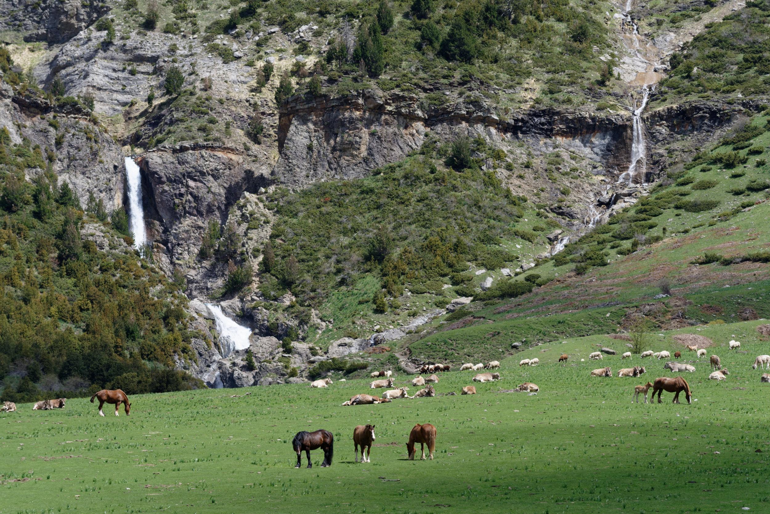180522-Marche Cascades de la Larri (158) (Valle de Pineta-Sobrarbe-Aragon)