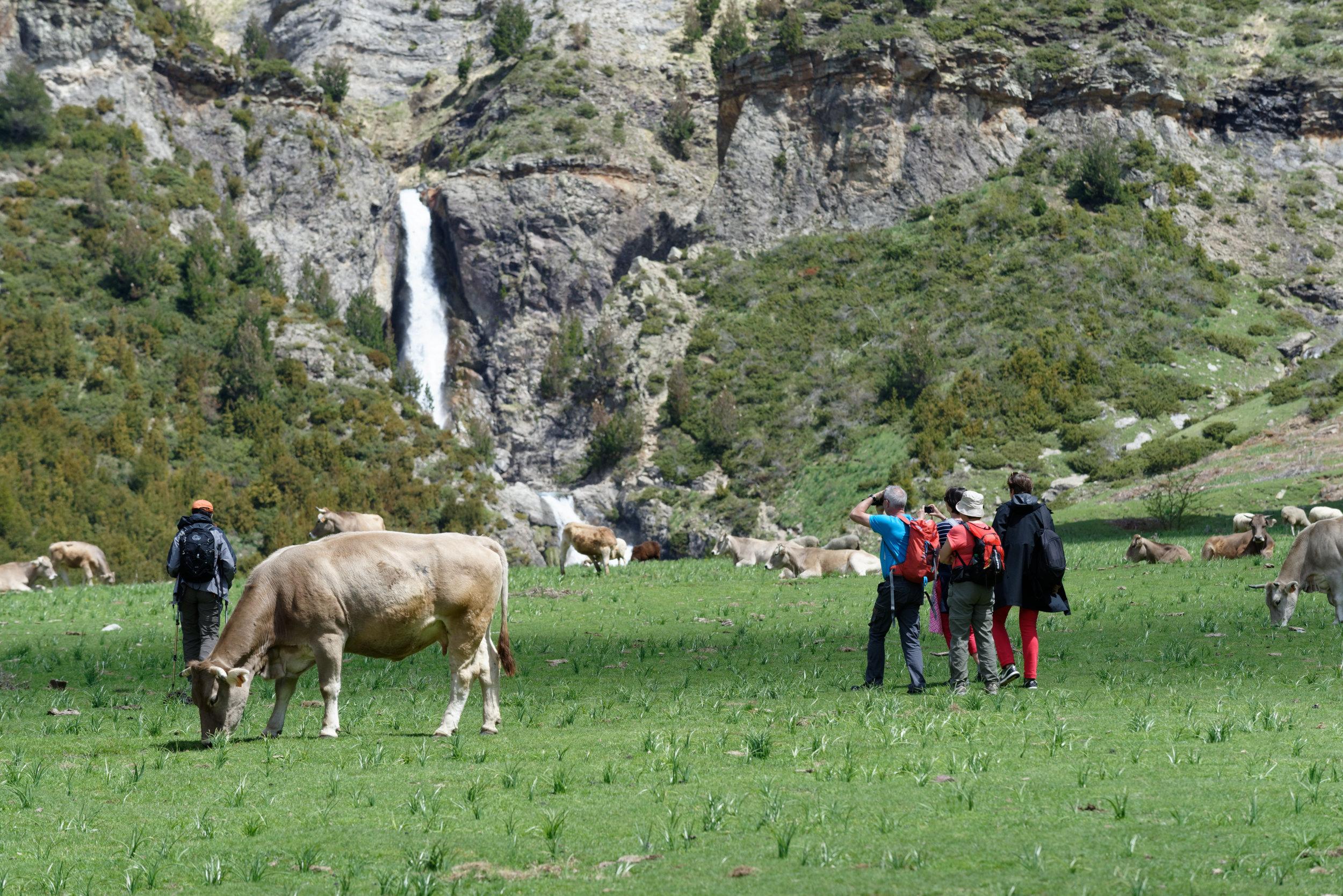 180522-Marche Cascades de la Larri (170) (Valle de Pineta-Sobrarbe-Aragon)
