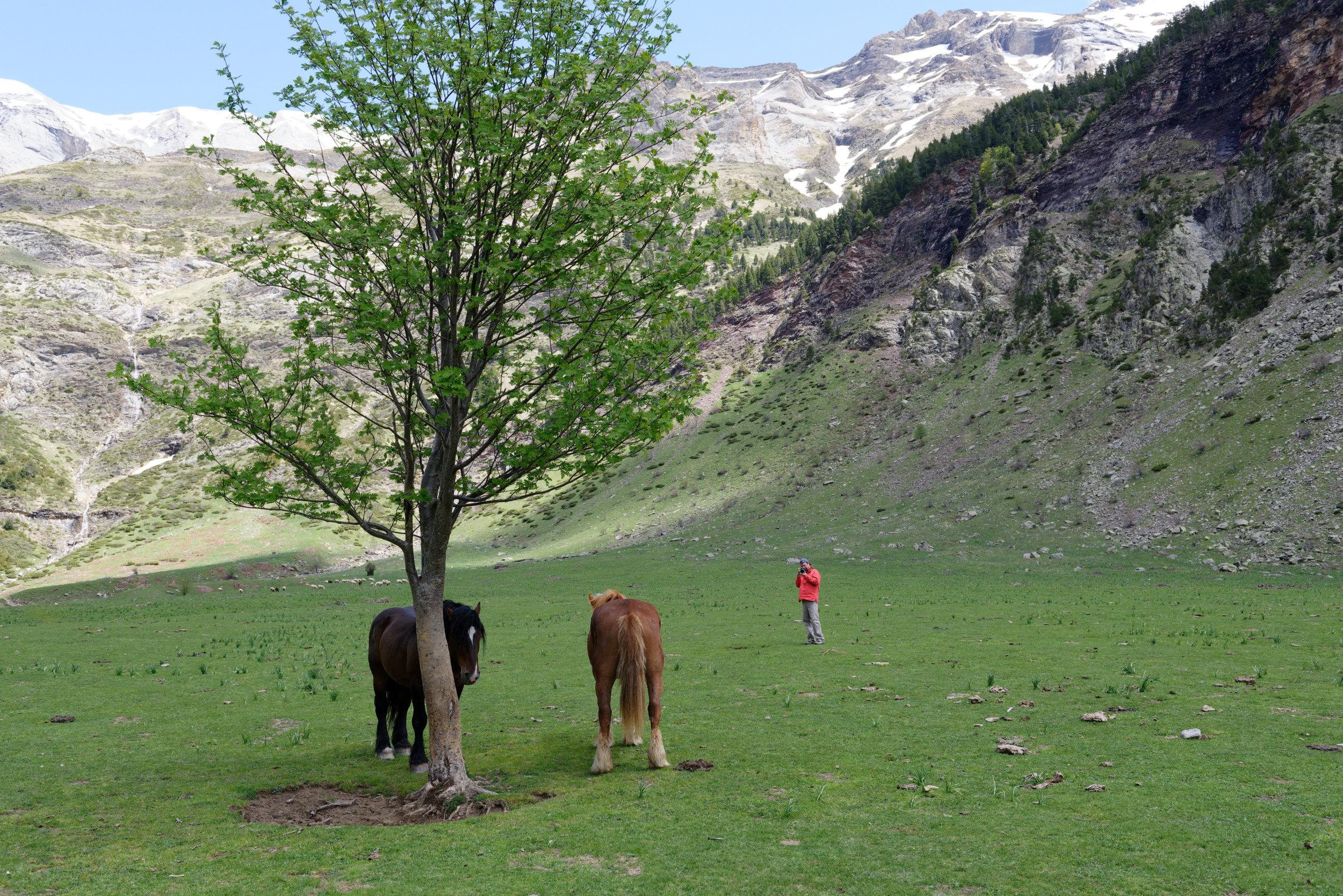 180522-Marche Cascades de la Larri (218) (Valle de Pineta-Sobrarbe-Aragon)