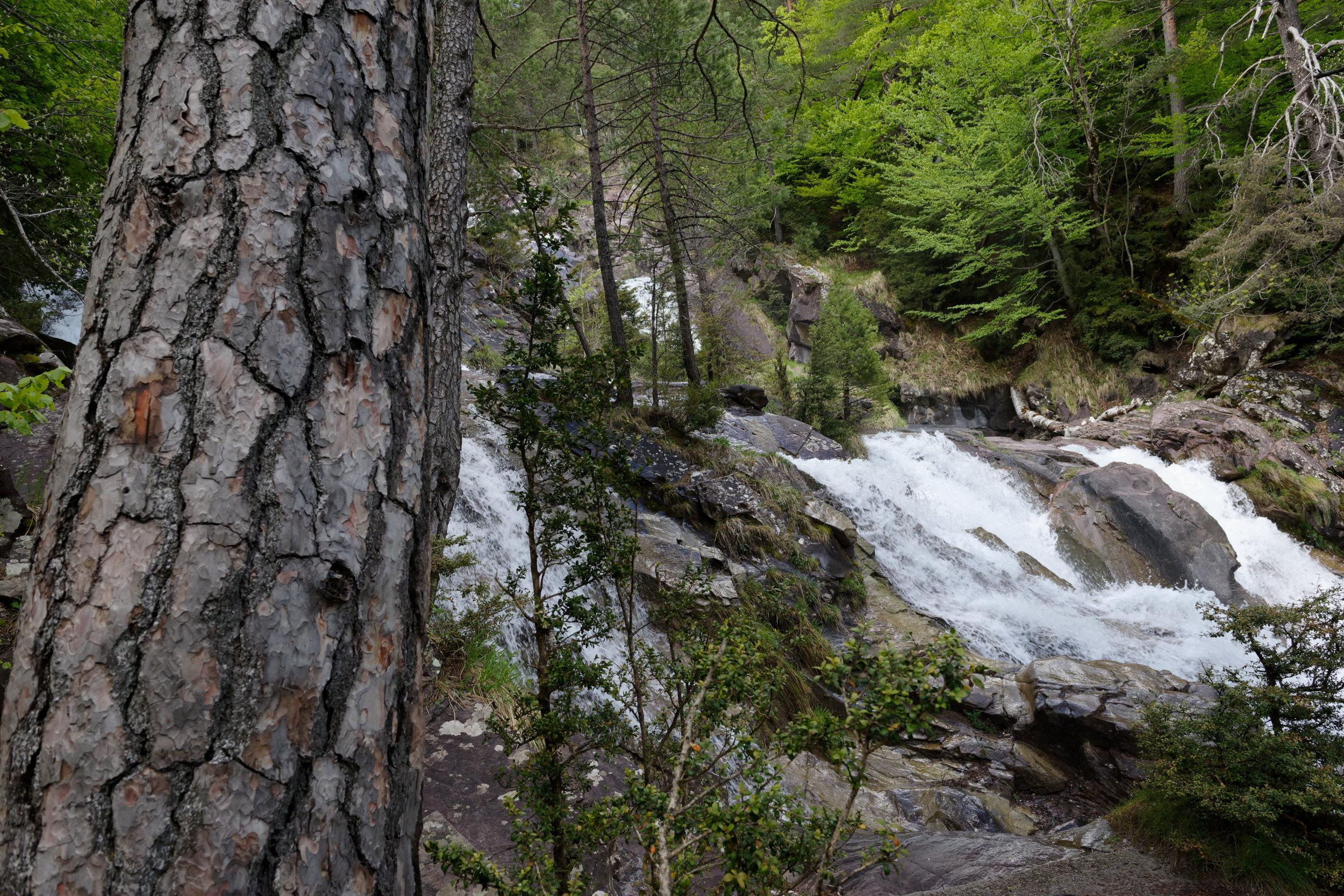 180522-Marche Cascades de la Larri (253) (Valle de Pineta-Sobrarbe-Aragon)