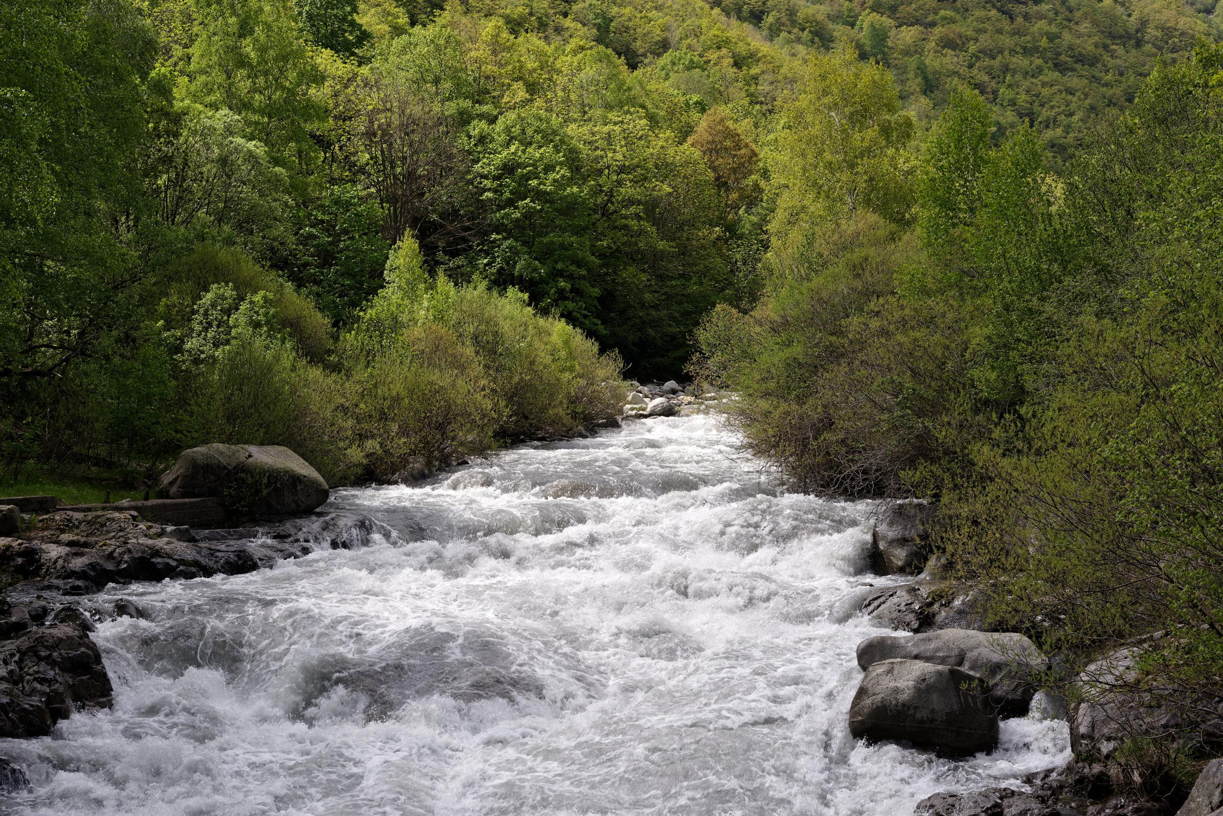 180524-2-Rio Cinqueta (10) (Valle de Chistau-Sobrarbe-Aragon)