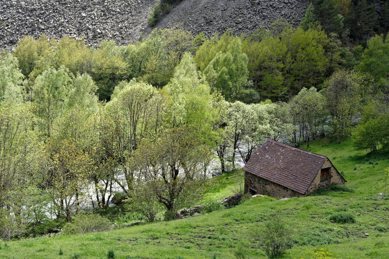 180524-2-Rio Cinqueta (16) (Valle de Chistau-Sobrarbe-Aragon)_3