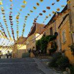 180630-Saint Cyprien 99ème Félibrée (12) (Dordogne)