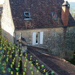 180630-Saint Cyprien 99ème Félibrée (16) (Dordogne)