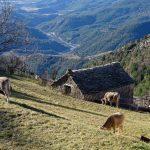 181220-(107) Tella (Aragon-Sobrarbe)