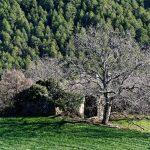 181220-(145) Puertolas (Aragon-Sobrarbe)