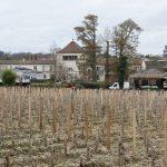 190126-(18) Caudalie (Gironde)
