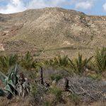 190401-2 (15) Cala et Playa el Playazo (Cabo de Gata-Andalousie)