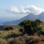 190401-3 (12) Sendero Requena (Cabo de Gata-Andalousie)_1