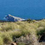 190401-3 (14) Sendero Requena (Cabo de Gata-Andalousie)_1