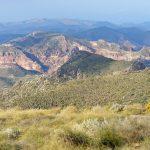 190401-3 (23) Sendero Requena (Cabo de Gata-Andalousie)_1
