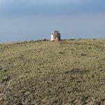 190401-3 (24) Sendero Requena (Cabo de Gata-Andalousie)_1